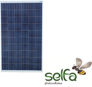 Selfa-600x567